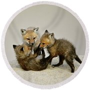 Fox Cubs At Play Round Beach Towel