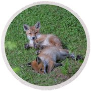 Fox Cubs Chilling Out Round Beach Towel