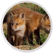 Fox Cubs Playing Round Beach Towel by William Jobes