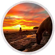 Fox In The Tidepools Round Beach Towel