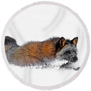 Fox On A Mission Round Beach Towel