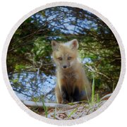 Fox Pup112 Round Beach Towel