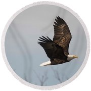 Fox River Eagles - 24 Round Beach Towel