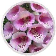 Foxglove Plant - Pink Bell Flowers. Macro Round Beach Towel