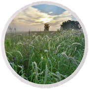 Foxtail Grasses In Glacial Park Round Beach Towel