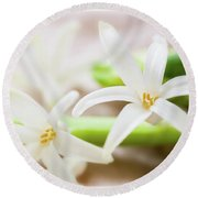 Fragile And Delicate  Round Beach Towel
