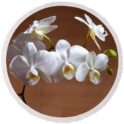Fragile Orchid  Round Beach Towel