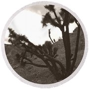 Framed By The Branches Round Beach Towel