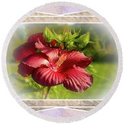 Framed Red Hibiscus Round Beach Towel