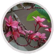 Frangipani Flowers Round Beach Towel