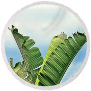 Frayed Palm Fronds Against Blue Sky Round Beach Towel