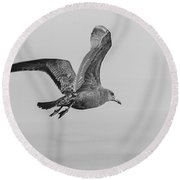 Freedom Of Flight Round Beach Towel