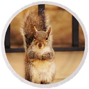 French Fry Eating Squirrel2 Round Beach Towel