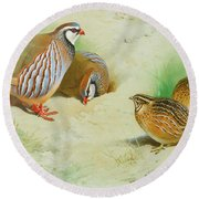 French Partridge By Thorburn Round Beach Towel