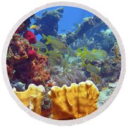French Reef 1 Round Beach Towel