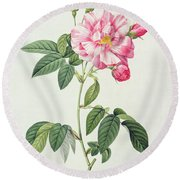 French Rose Round Beach Towel by Pierre Joseph Redoute