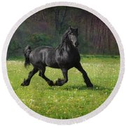Friesian Power Round Beach Towel