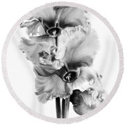 Frilly Edged Cyclamen Flowers Monochrome Round Beach Towel
