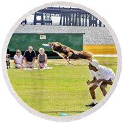 Frisbee Dog Round Beach Towel by Brian Wallace