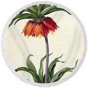 Fritillaria Imperialis Round Beach Towel