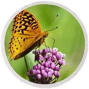 Fritillary Butterfly And Flower Round Beach Towel