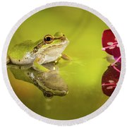Frog And Fuchsia With Reflections Round Beach Towel