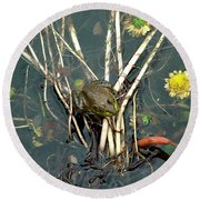 Frog On A Stick Round Beach Towel