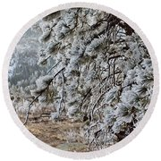Frost-covered Pine Round Beach Towel