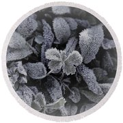 Frost On Leaves 1 Round Beach Towel