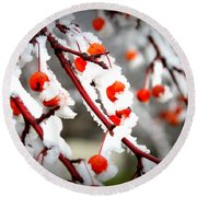 Frosted Berries Round Beach Towel