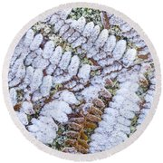 Frosted Fern Round Beach Towel