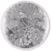 Frosted Grapes Vignette Round Beach Towel