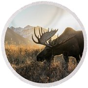 Frosted Grass For Breakfast Round Beach Towel