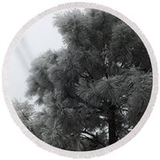 Frosted Pine Round Beach Towel