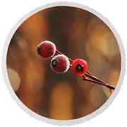 Frosted Rose Hips Round Beach Towel