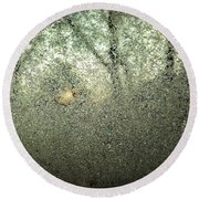 Frosty Morning Round Beach Towel by Robert Knight