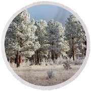 Frosty Pikes National Forest Round Beach Towel