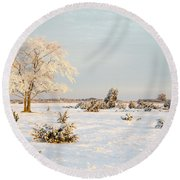 Frosty Solitude Tree In The First Morning Sunshine Round Beach Towel