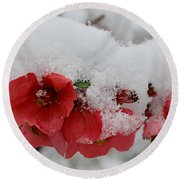 Frozen Flowers Round Beach Towel