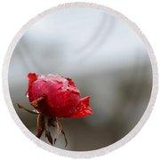 Frozen Red Rose- Macro Round Beach Towel