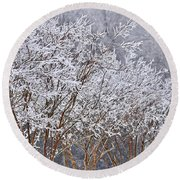 Frozen Trees During Winter Storm Round Beach Towel