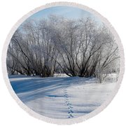 Frozen Views 4 Round Beach Towel