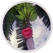 Fruitful Beauty Round Beach Towel