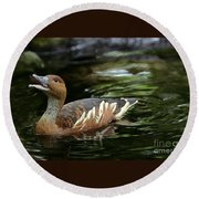 Fulvous Whistling Duck 2 Round Beach Towel