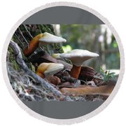 Fungi 1 Round Beach Towel