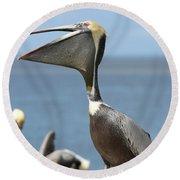 Funny Brown Pelican Round Beach Towel