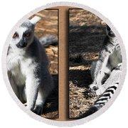 Funny Lemurs Round Beach Towel