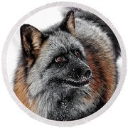 Funny Little Furry Face Round Beach Towel