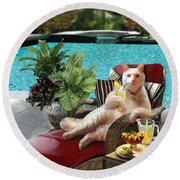 Funny Pet  Vacationing Kitty Round Beach Towel