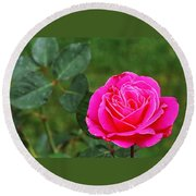 Fuschia Rose Round Beach Towel